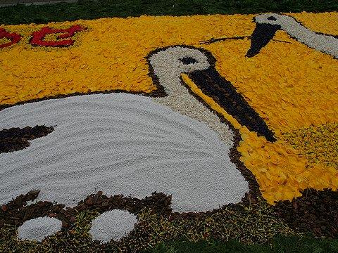 豊岡コウノトリの郷公園・コウノトリの花絵/インフォラータ神戸