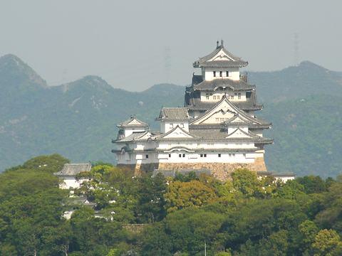 新緑の姫路城/姫路市