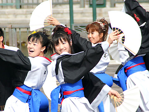 Yosakoi004