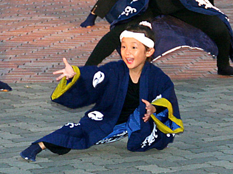 Yosakoi014