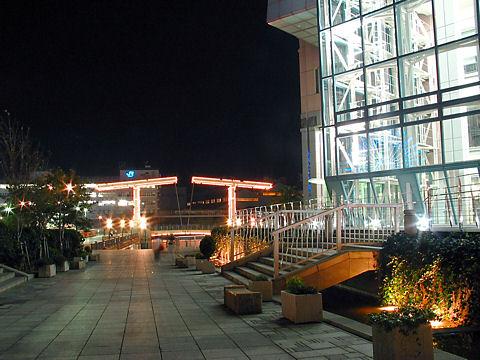 はねっこ広場の夜景・神戸ハーバーランド/神戸市中央区
