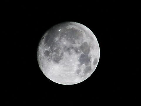 中秋の名月・月の写真