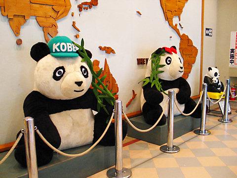 王子動物園動物資料館/神戸市