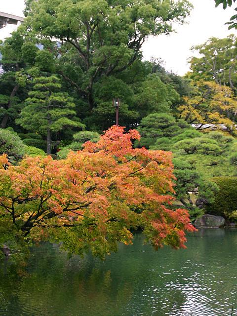 日本庭園と紅葉・神戸相楽園/神戸市