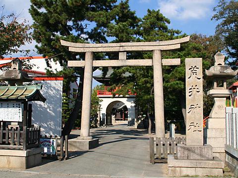 荒井神社の結びの松(播州松めぐり)/高砂市