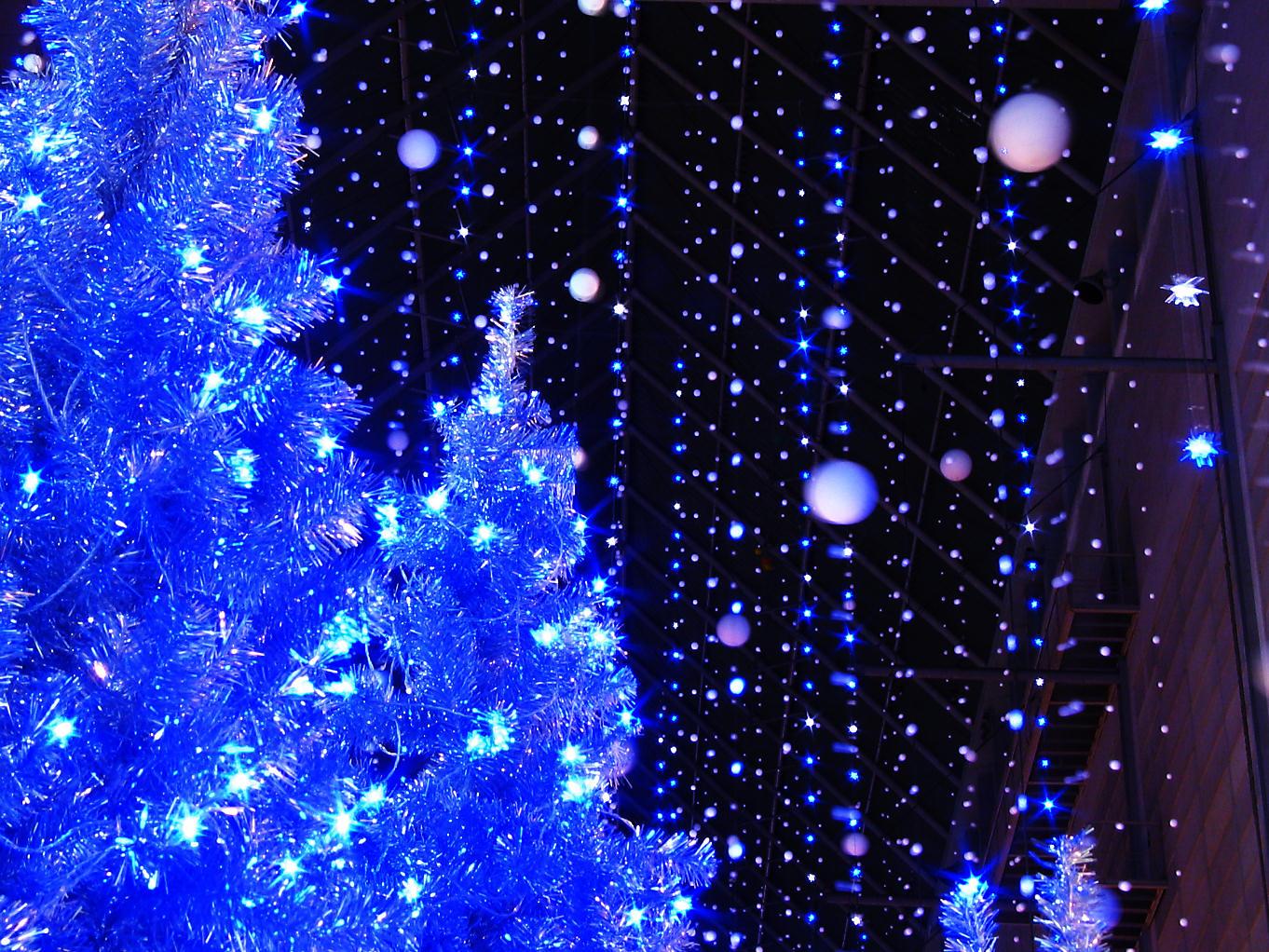 クリスマスイルミネーションの壁紙 Xga 1024 768 ぶらり兵庫 ぶらり神戸 神戸の観光情報とイベント情報 楽天ブログ