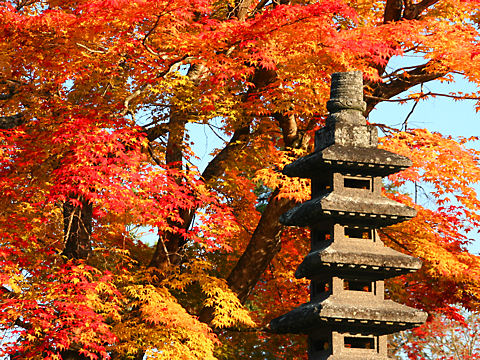 法光寺の紅葉