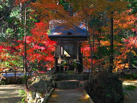 法華山 一乗寺の紅葉
