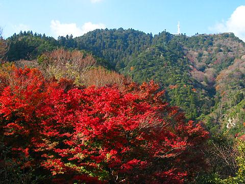 摩耶山登山道の紅葉と摩耶山の山頂