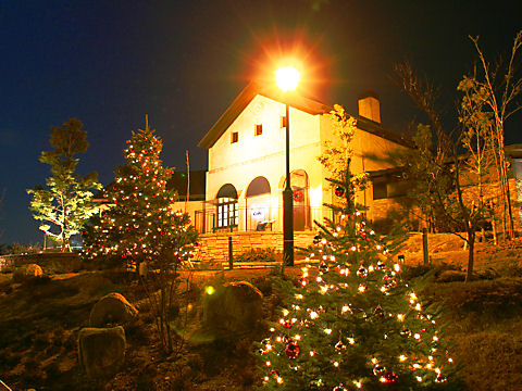 六甲ガーデンテラスの夜景とクリスマスツリー