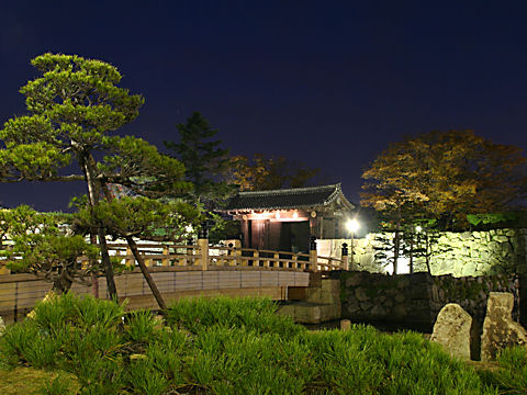桜門橋と大手門のライトアップ夜景