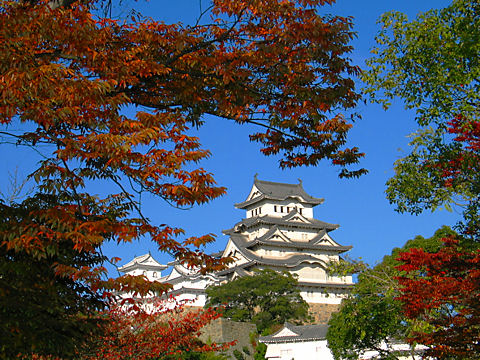 姫路城と桜の紅葉