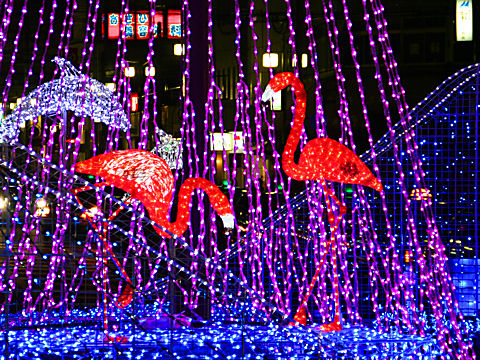 JR西明石駅クリスマスイルミネーション・クリスマス夜景