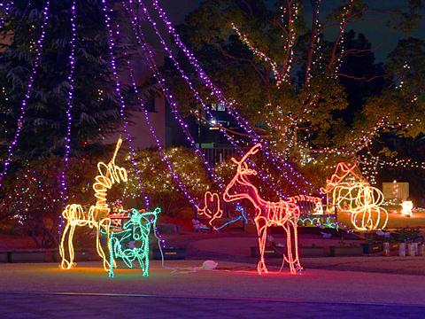 クリスマスツリーとハートフル小野クリスマスイルミネーション