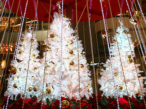 新神戸オリエンタルアベニューのクリスマスツリー
