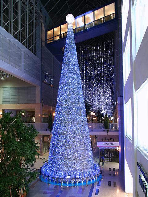 キャナルガーデンのクリスマスツリーとイルミネーション