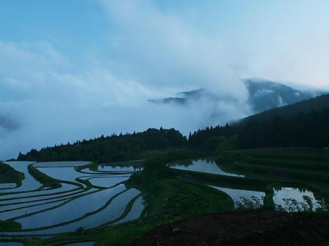 別宮の棚田と雲海から頭を出す氷ノ山