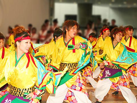 神戸 YOSAKOI 2008