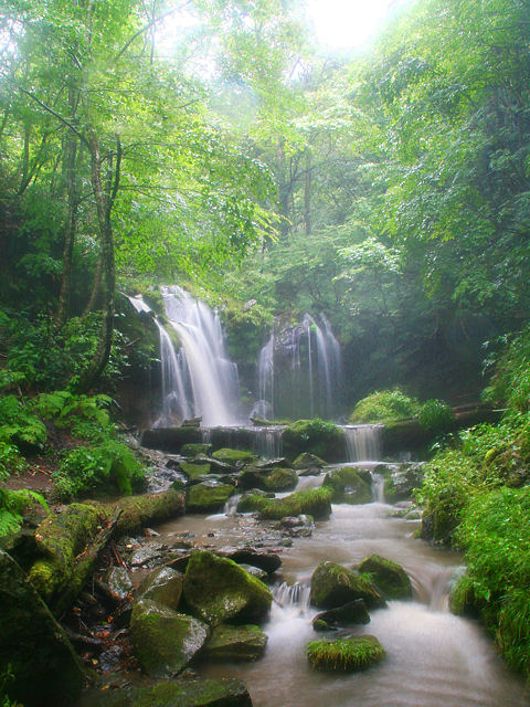 猿壺の滝の写真画像