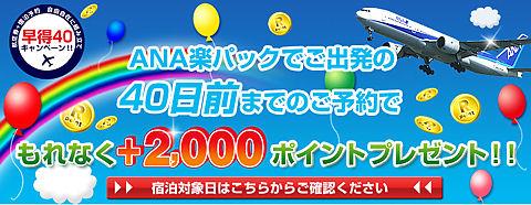 ANA国内航空券とホテル・旅館の組合せで国内旅行、温泉旅行、北海道旅行、沖縄旅行など自由自在