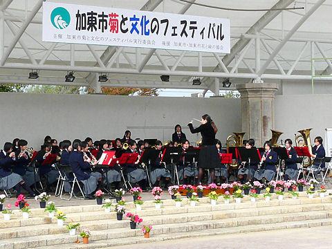 菊と文化のフェスティバル