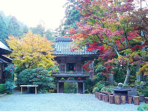 岩龍寺の紅葉