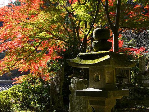 奥山寺の紅葉