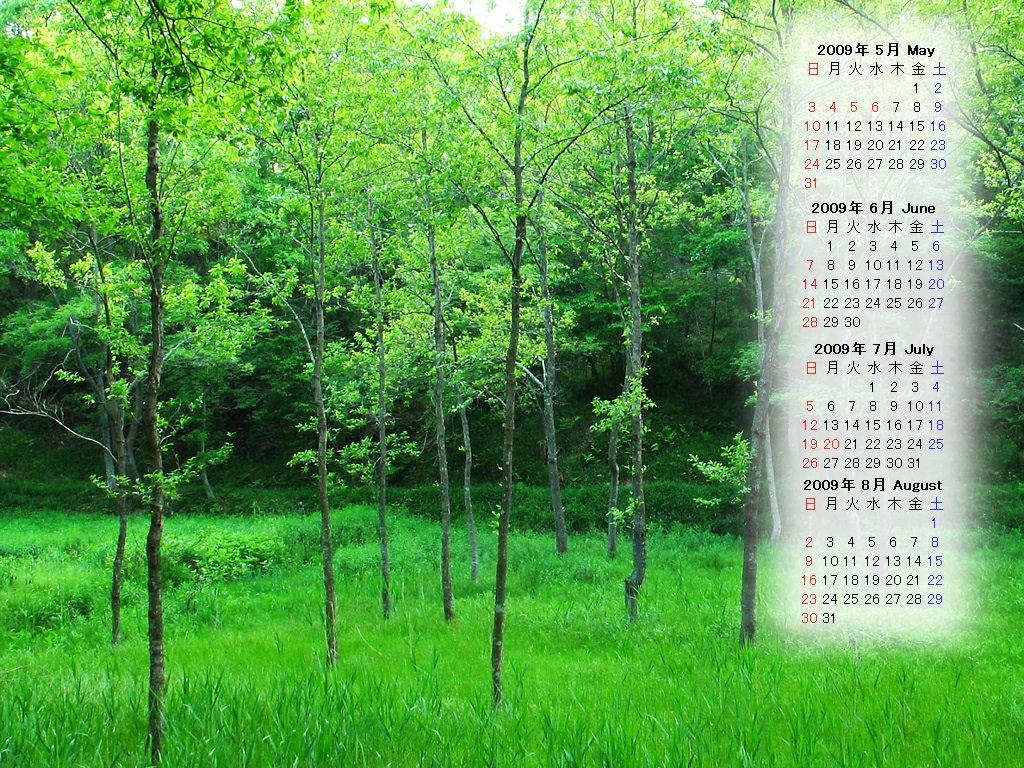 無料 無料カレンダ : 月壁紙カレンダー・新緑の無料 ...