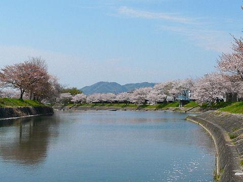 Chidorigawa_002
