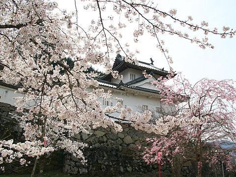 Izushi_004