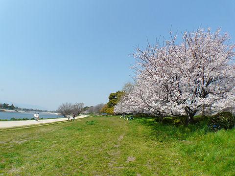 Hanshinmukogawa_090423_005