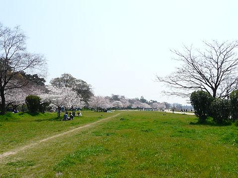 Mukogawa_007