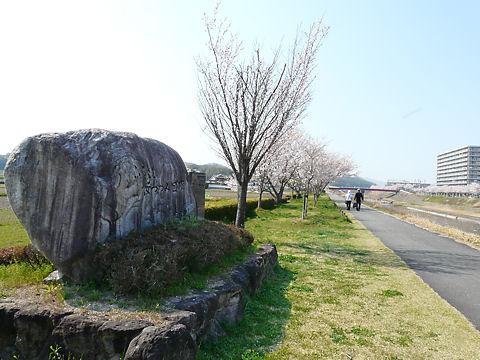 Mukogawa_002_2