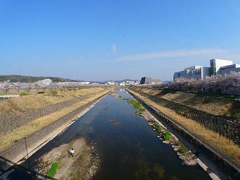 Mukogawa_003_2
