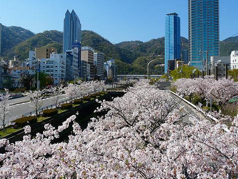 Ikutagawa_090423_0021