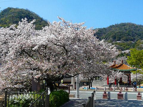 Ikutagawa_090423_0051