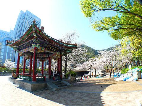 Ikutagawa_090423_0061