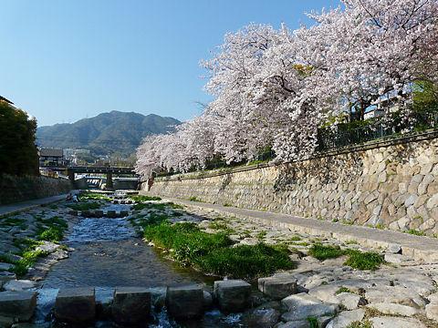 Tsugagawa_090423_0041