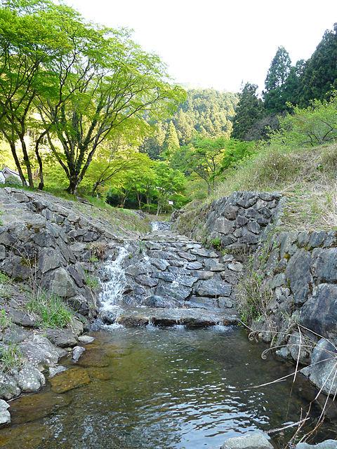 Mukogawa_002