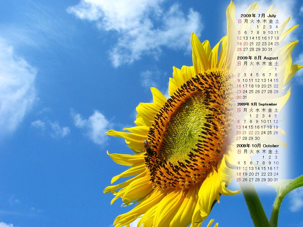 Preston and Steve Calendar 2009 : 家族カレンダー 2015 : カレンダー