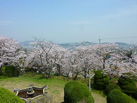 100406hikasayama0005