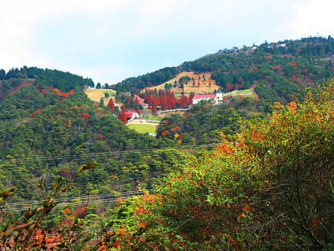 紅葉の六甲山牧場