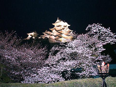 姫路城の画像 p1_1