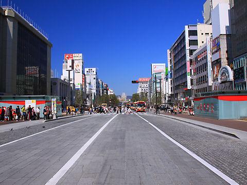 姫路城の写真 / 姫路駅北駅前広場・大手前通りから撮影