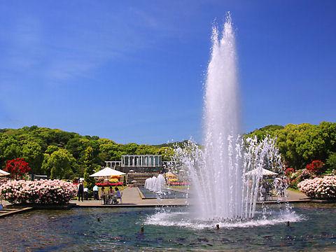 神戸市 須磨離宮公園 春のローズフェスティバル / 須磨離宮公園王侯貴族のバラ園