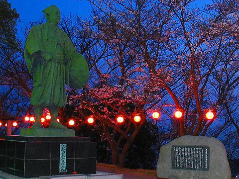 赤穂市 赤穂御崎・赤穂東御崎公園の夜桜、花見