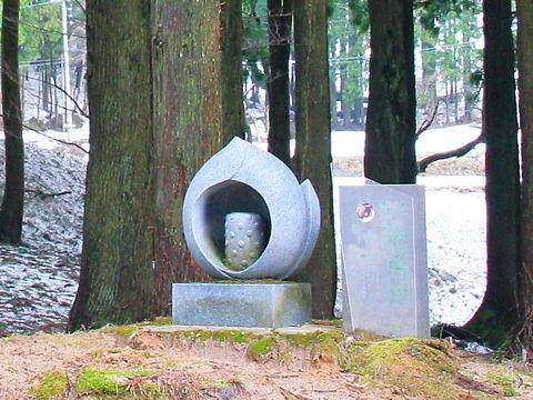 香美町 ザゼンソウの群生地のある大山祇神社のザゼンソウの碑