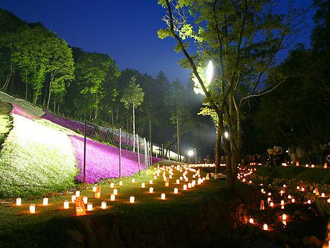 姫路市 ヤマサ蒲鉾芝桜の小道のライトアップ「夜芝桜観賞会」