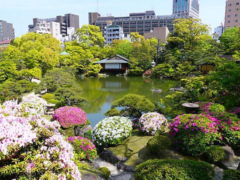 神戸市 相楽園の日本庭園とつつじ