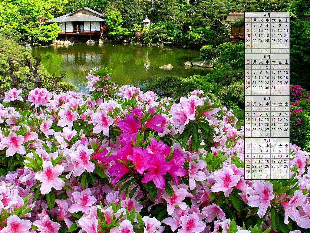 壁紙・躑躅(ツツジ)の花/2007年無料壁紙カレンダー/2007年4月~2007年7月